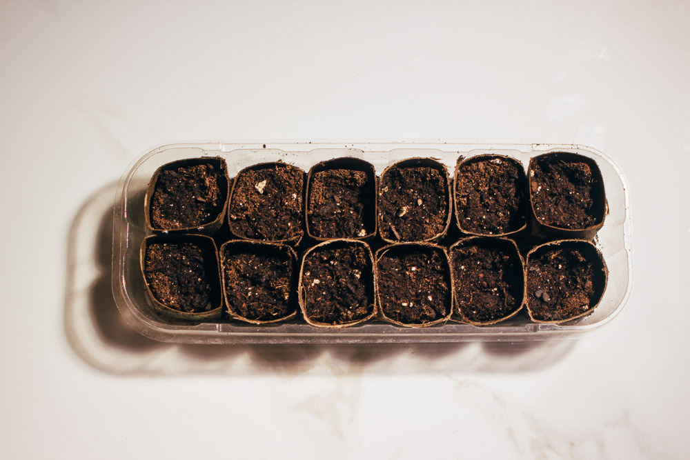 Finally, fill your seed pods up with organic potting soil and plant your seeds.