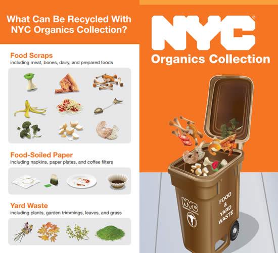 NYC-OrganicBrochure.jpg