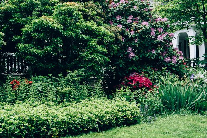 jwpm_gardenramble-1-2.jpg