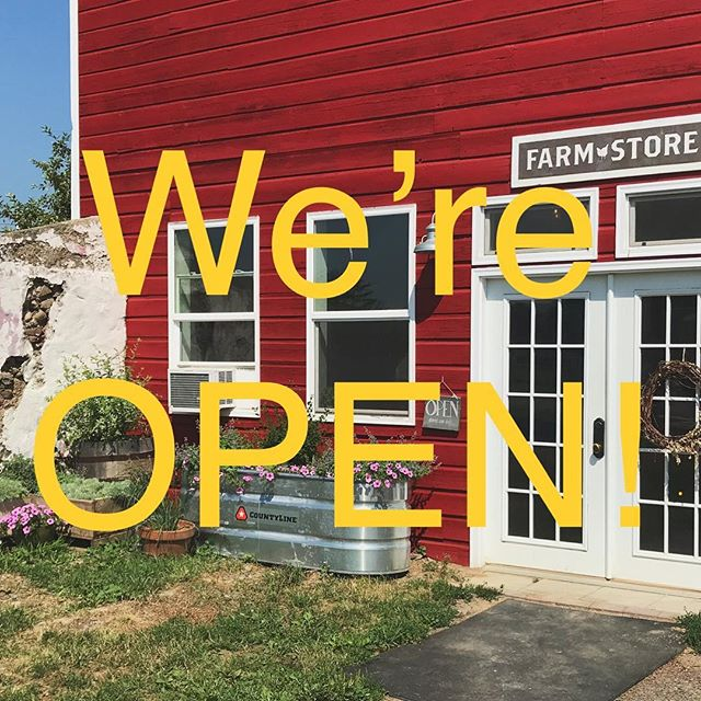 It's hot. We're open. Come reach in our freezers and feel some temporary relief!