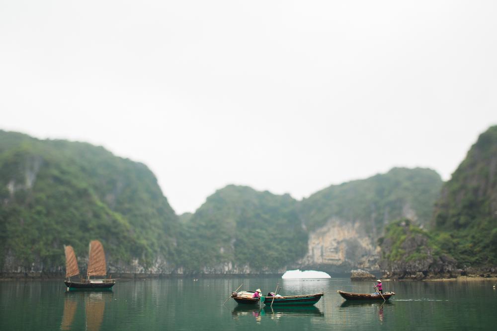 vietnamsethalwinphotoworks-46.jpg