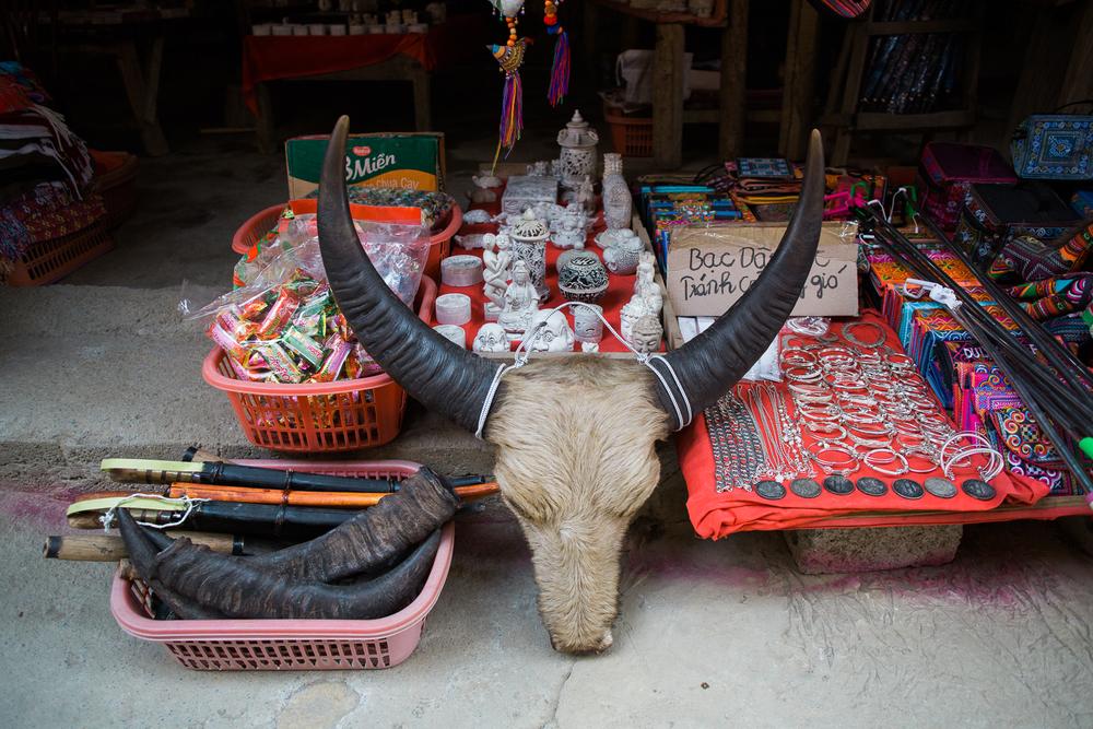 vietnamsethalwinphotoworks-59.jpg