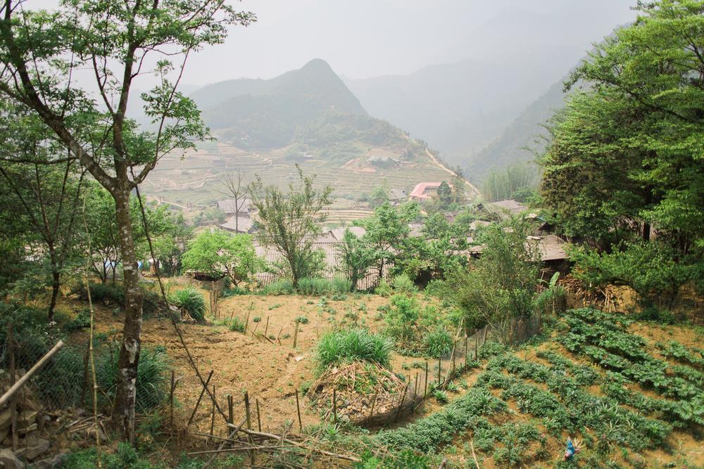 vietnamsethalwinphotoworks-60.jpg