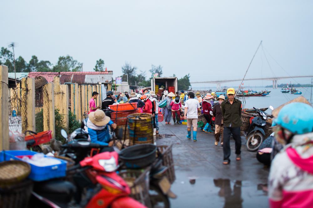 vietnamsethalwinphotoworks-98.jpg