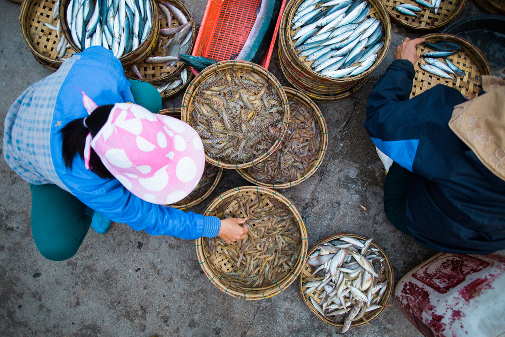 vietnamsethalwinphotoworks-103.jpg