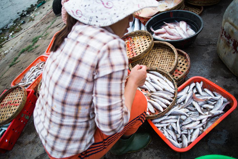 vietnamsethalwinphotoworks-105.jpg