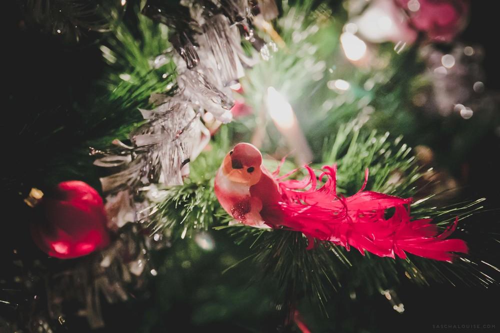 saschalouise.com_Christmas