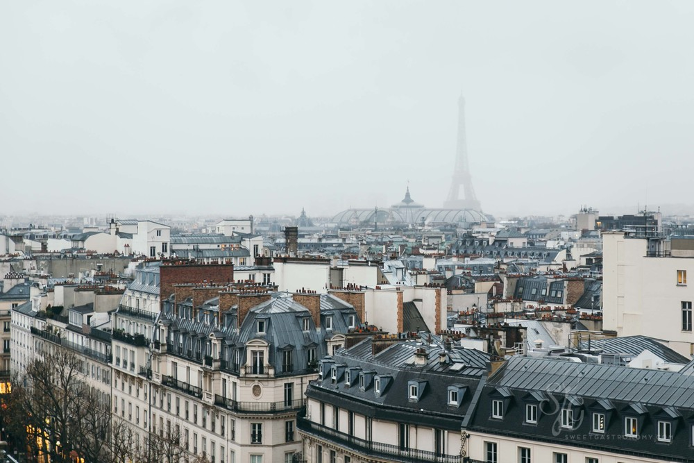 Paris rooftops in the winter rain