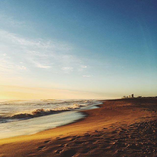 The golden light of a sunrise.