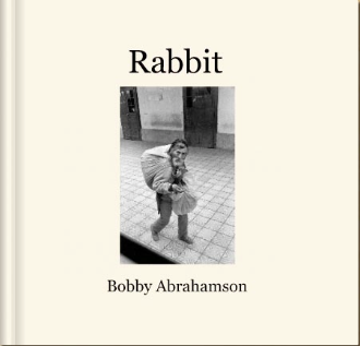 RABBIT BOOK: 2008