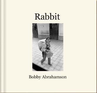 RABBIT BOOK: 2008