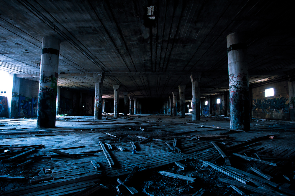 Perusing the Packard Plant