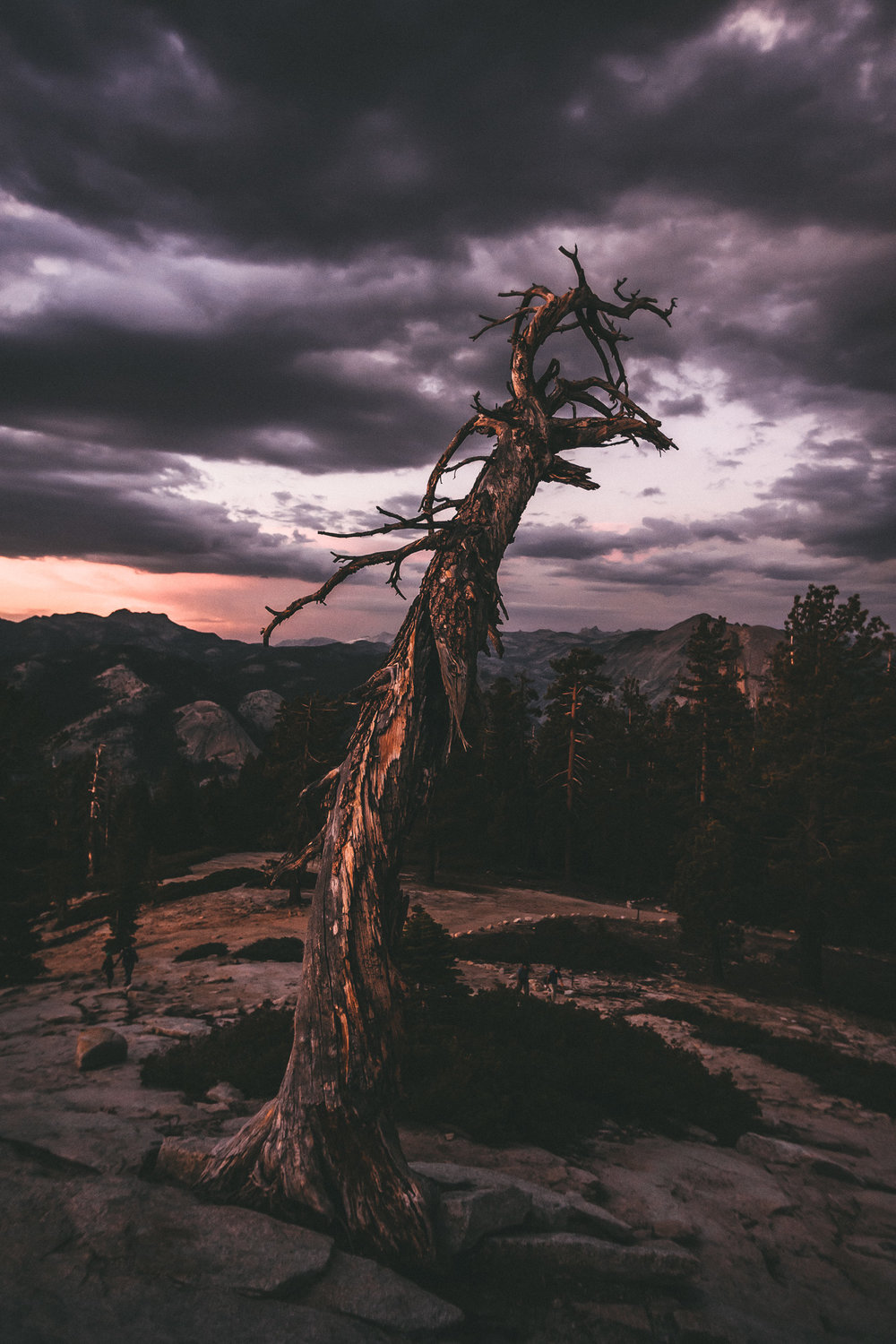 Sentinel dome is a beautiful setting for an elopement in Yosemite national park