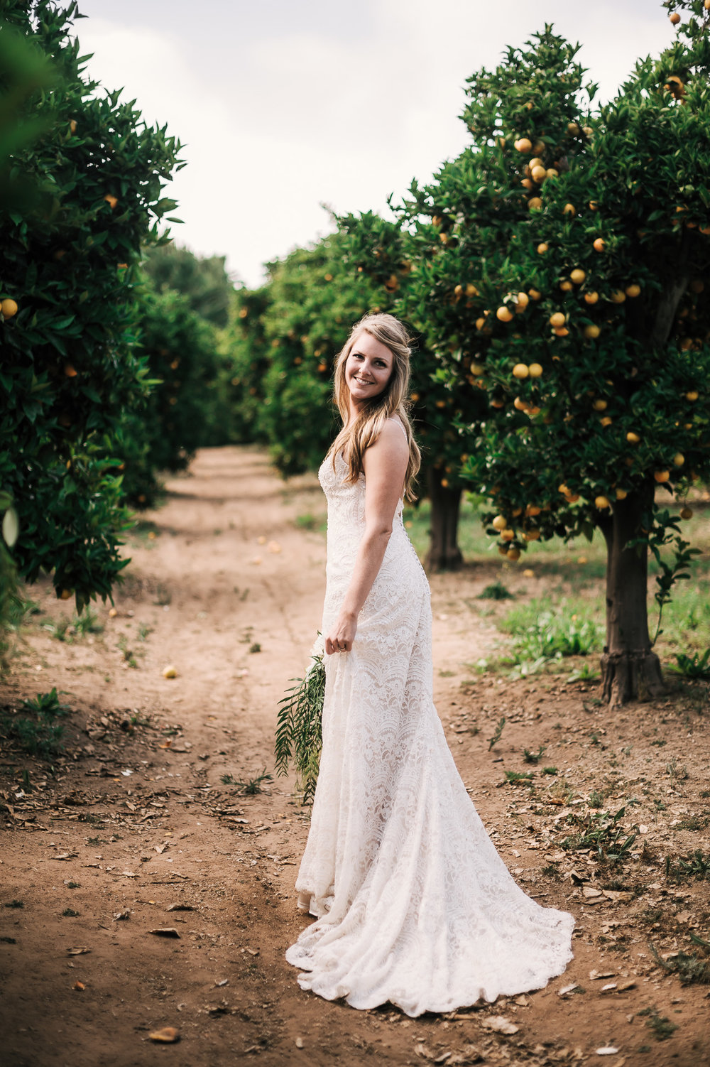 bride walks through an orange orchard in a rustic temecula wine country wedding