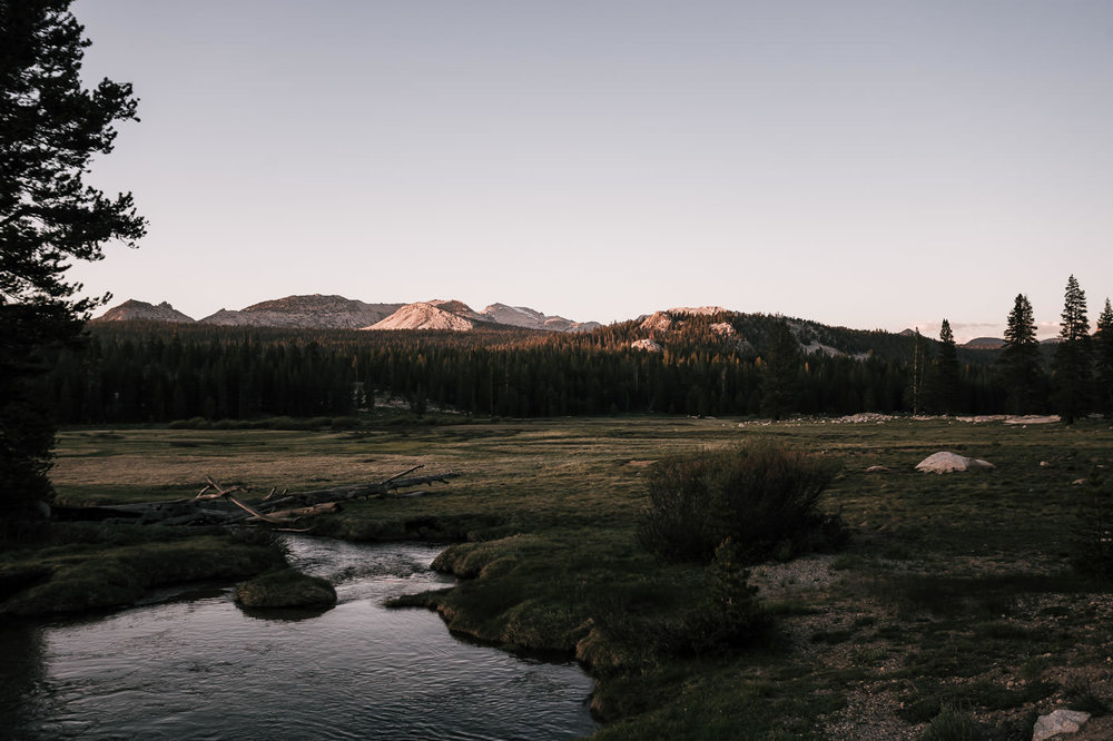 beautiful quiet meadow at sunset in the Tioga Pass located in yosemite national park perfect for an intimate elopement