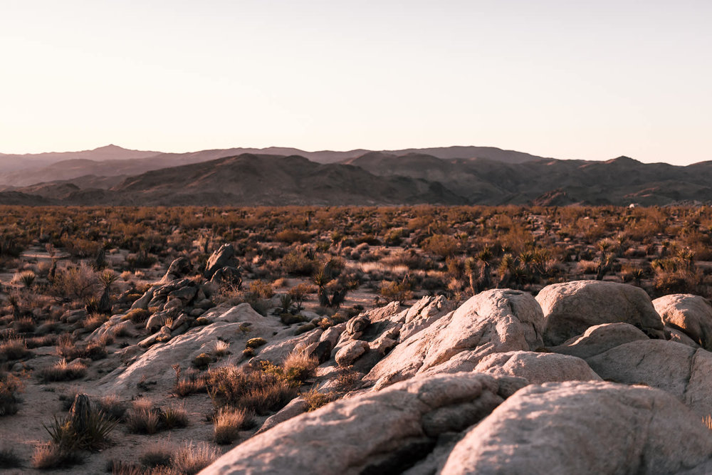 sunset on a beautiful spot to elope in joshua tree national park