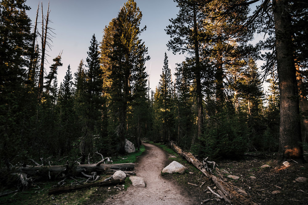 hiking along the trail to cathederal lake in yosemite national park at sunset