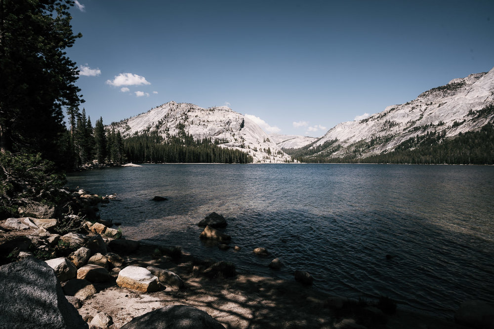 Tenaya Lake is a beautiful destination when the Tioga pass to open for your yosemite elopement.