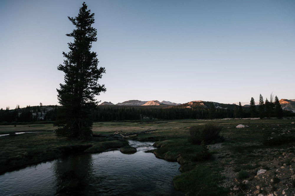 Past Tenaya lake and you'll find the Tuolumne Meadows a gorgeous spot for a Yosemite Elopement.