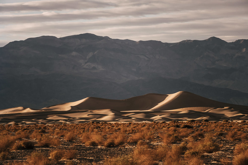 What is a desert elopement without stunning sand dunes? Death Valley's dunes will not disappoint the adventurous eloping couple.