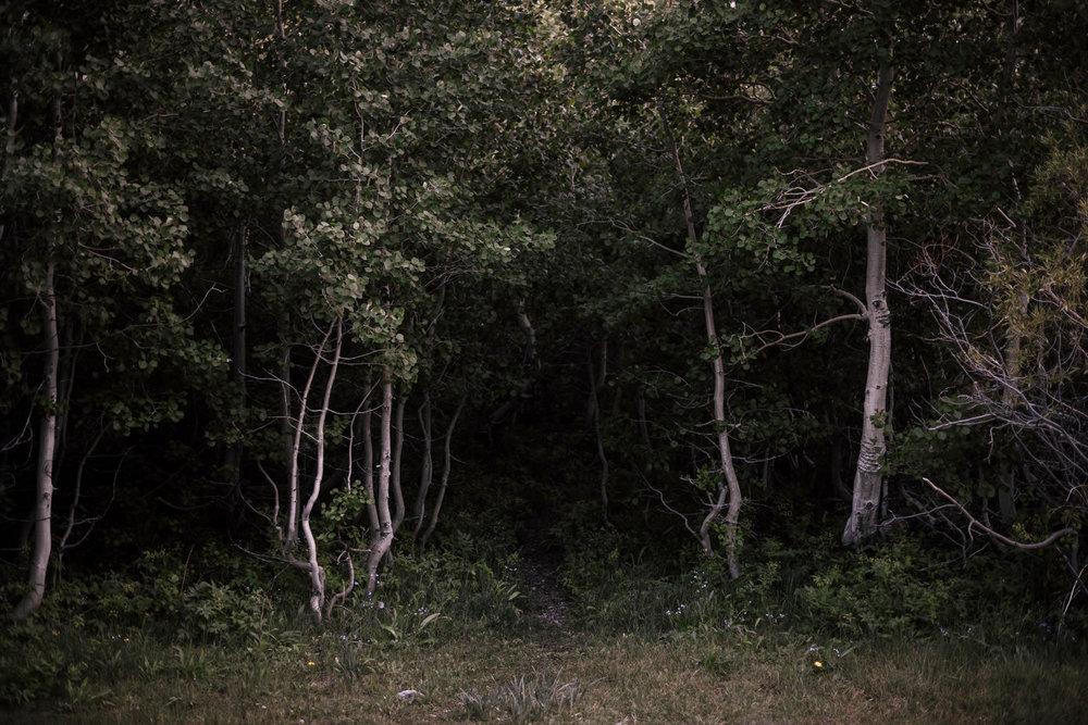 June-lake-elopement-location.jpg
