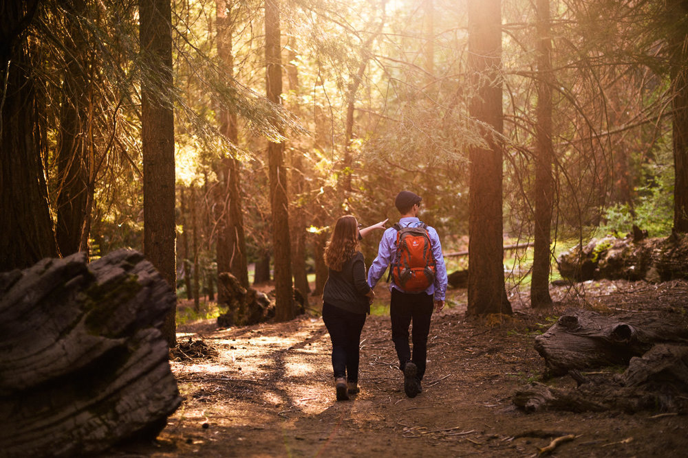Lovers walk hand and hand on a hike through the forests of Sequoia national park at sunset during their engagement shoot