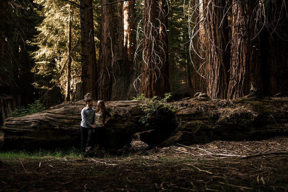 Adventurous couples stands in front of a fallen tree in sequoia national park California