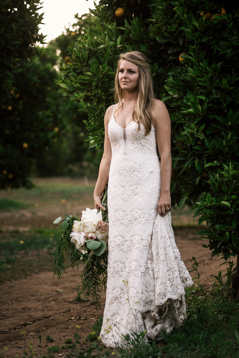 Stunning portrait of a bride among the orange trees of an orchard taken by the best Temecula wedding photographer.