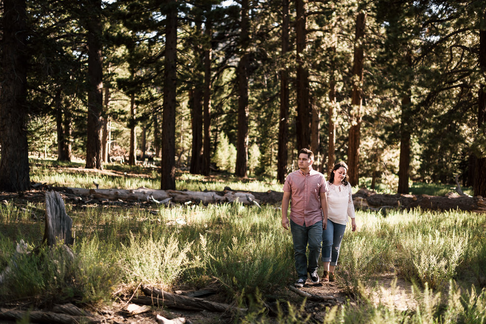 Best engagement locations in southern california, Mt San Jacinto.