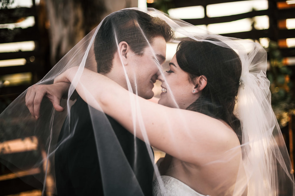 Bride and groom kiss under the wedding veil in front of a pallet wall at their Temecula wedding.