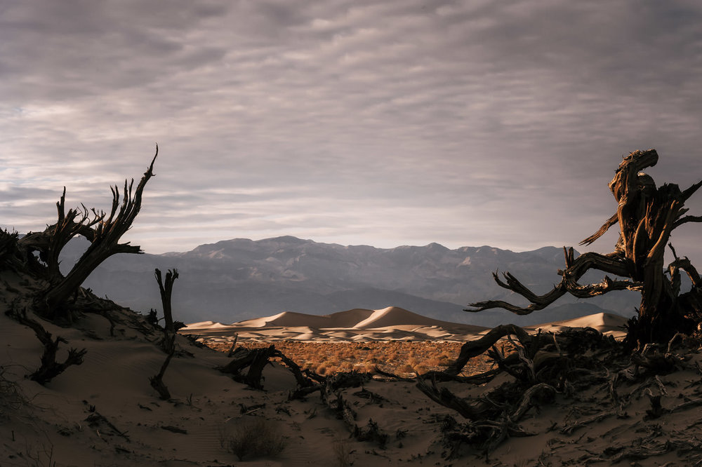 The sand dunes of Death Valley are the perfect destination for your elopement.