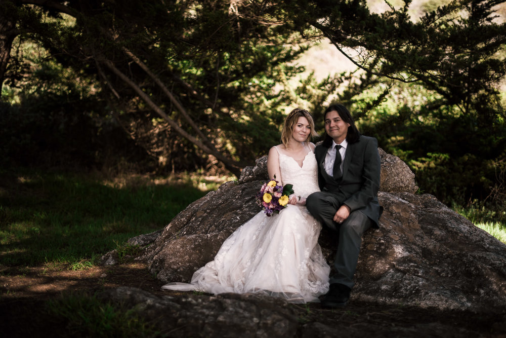 Californian wedding photographer captures stunning portrait of a newly married couple in Big Sur.