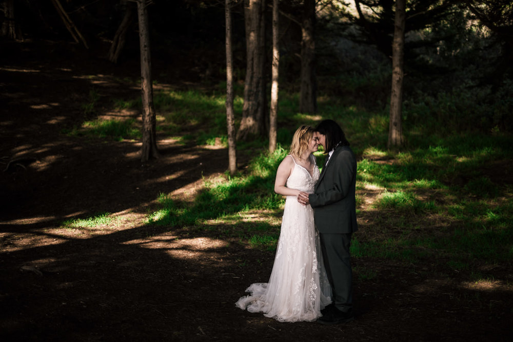 National Park elopement photographer captures beautiful portraits of a newly married couple.