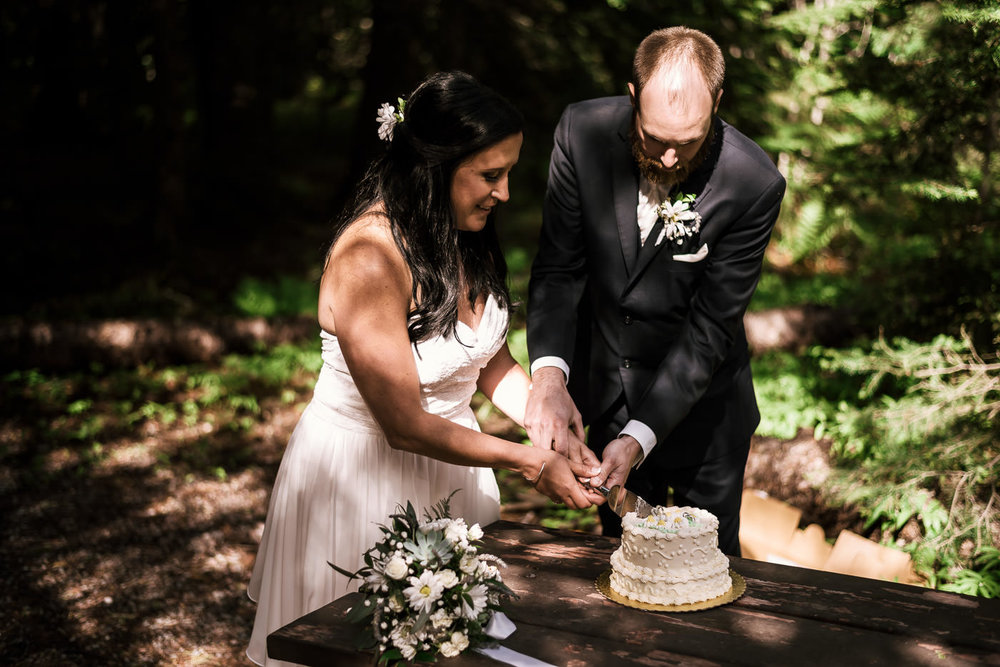 Cake cutting ceremony after an elopement at Lake Mcdonald.