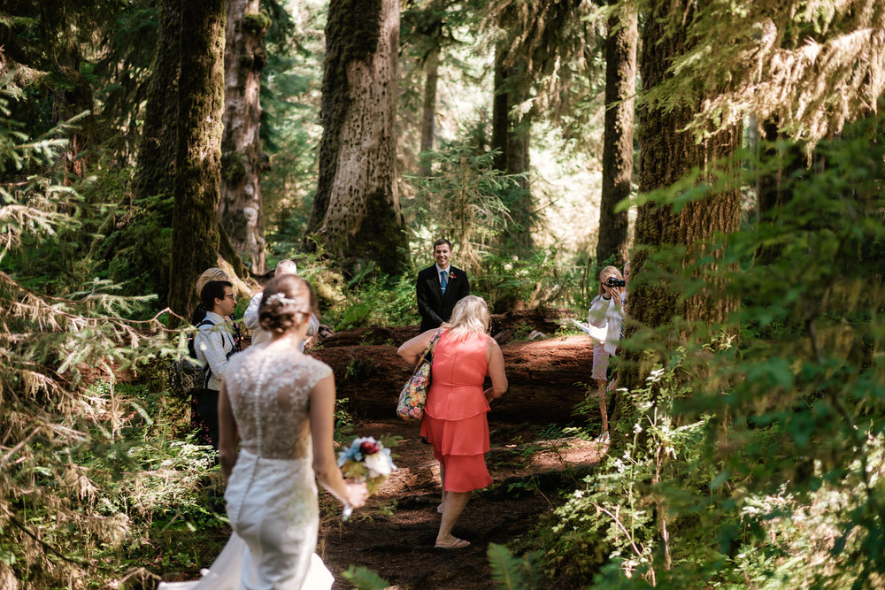 Bride arrives at her intimate marriage ceremony in the Hoh Rainforest.