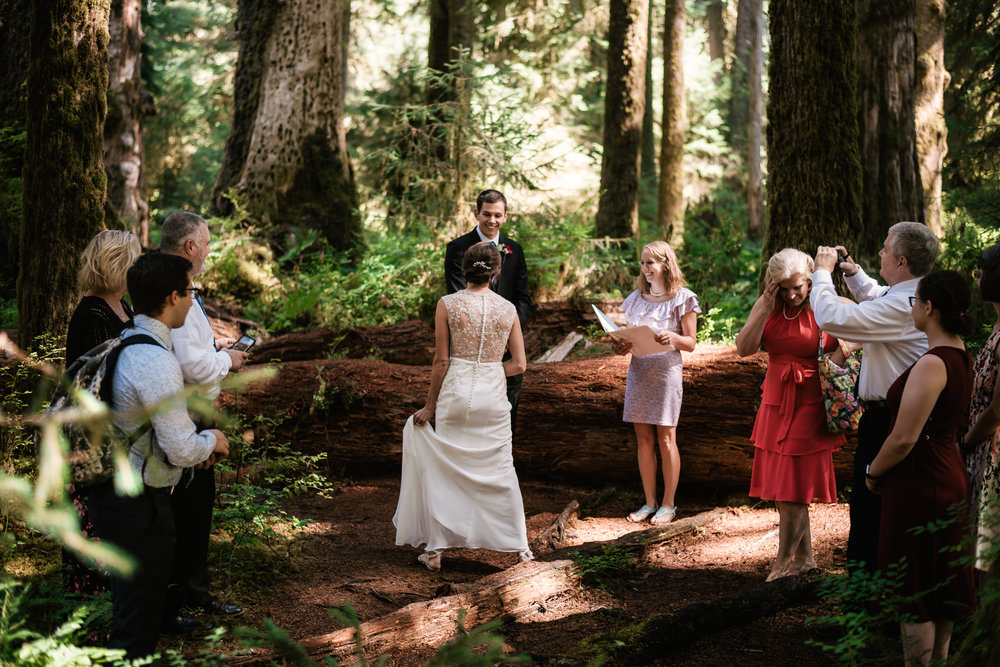 Hoh Rainforest elopement ceremony in Olympic National Park.