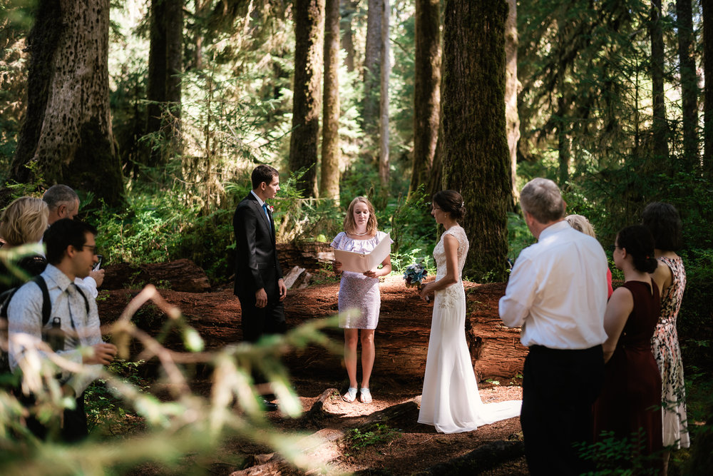 Couple elopes to Washington and gets married in Hoh Rainforest on the Olympic Peninsula.