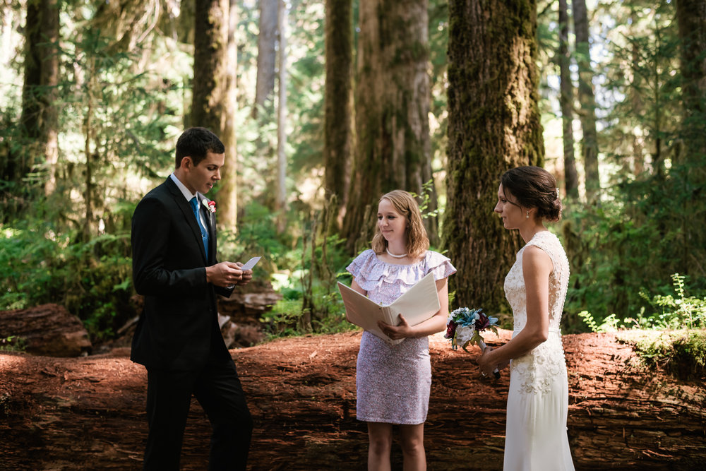 Couple reads their marriage vows in front of a fallen cedar tree in Olympic National Park.