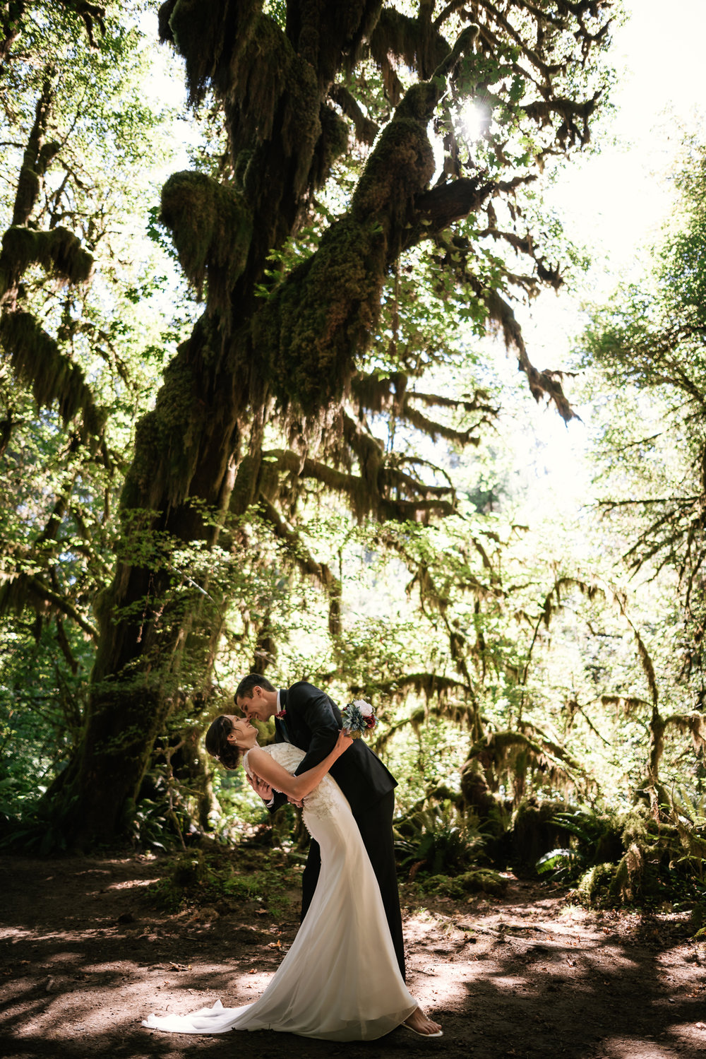 Romantic dip before the towering Cedar Trees in the Hall of Moses in Hoh Rainforest.