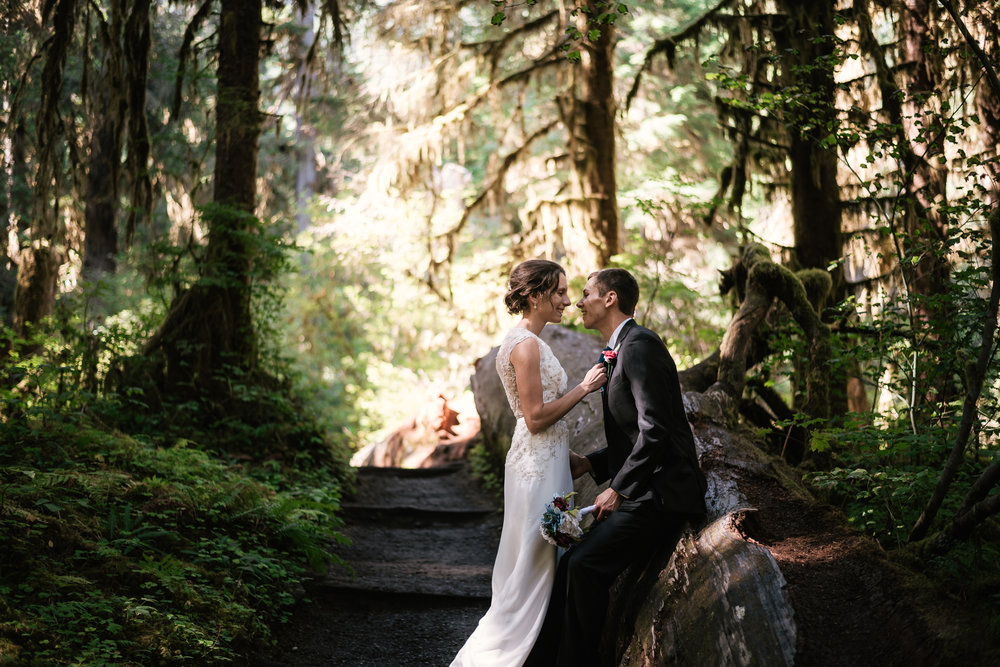 Bride grabs her groom's tie and pulls him in for a tender kiss in the Hoh Rainforest.