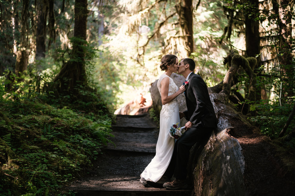 eloping to washington's Hoh rainforest - I had been wanting to explore Olympic National Park for years, so when Alex and Evan inquired if I'd be interested in photographing their elopement in the Hoh Rainforest, I couldn't even begin to explain how excited I was. Their intimate ceremony with their closest family and friends in a small clearing in the Hall of Mosses among towering trees and hanging mosses was nothing short of magical. Afterwards we hiked the trails and created a series of beautiful portraits that truly capture these two's love for each other. But as if that wasn't incredible enough, we then hopped in the car and made our way to Ruby Beach for another adventure.