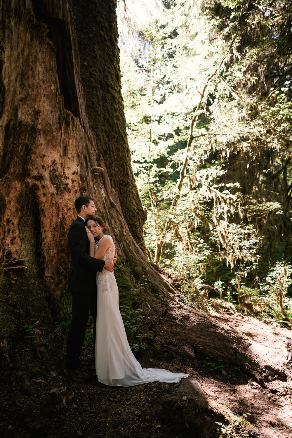 Couple holds each other tight in the shadow of a towering cedar tree in the Hoh Rainforest.