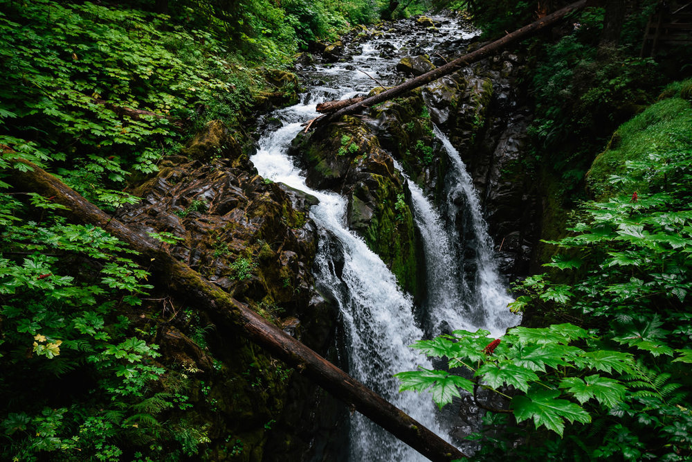 Soleduck Falls in the Olympic National Park makes a spectacular elopement destination for those adventurous hearts.