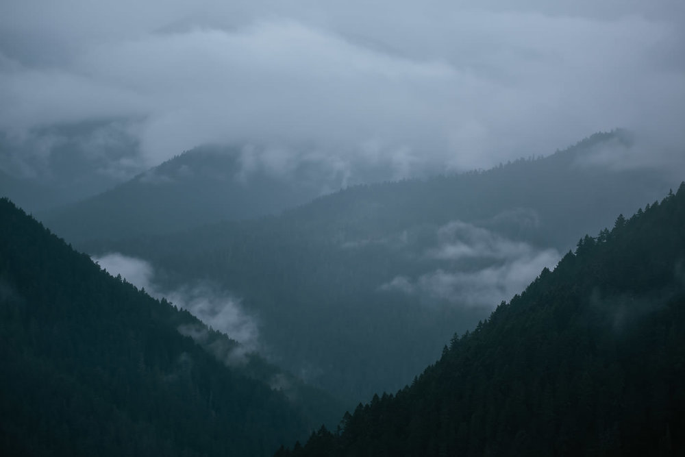 Hurricane Ridge in the northern tip of the Olympic Peninsula makes a jaw dropping background for elopement ceremonies.