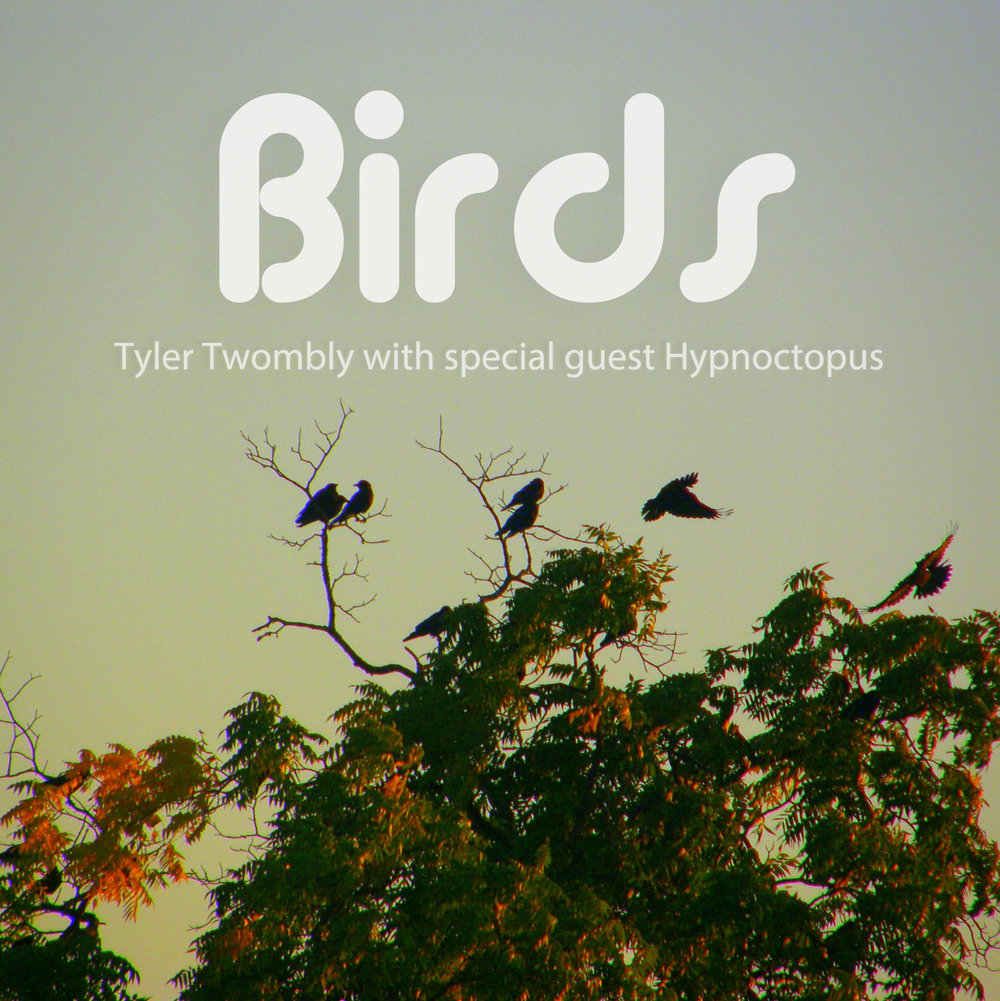 """Chill Beats EP"" re-titled ""Birds"" set for wide release on Spotify, Apple Music, etc."