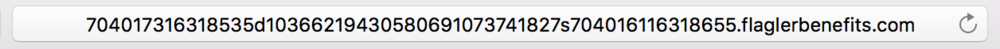 URL of the phishing email scam targeting Apple IDs
