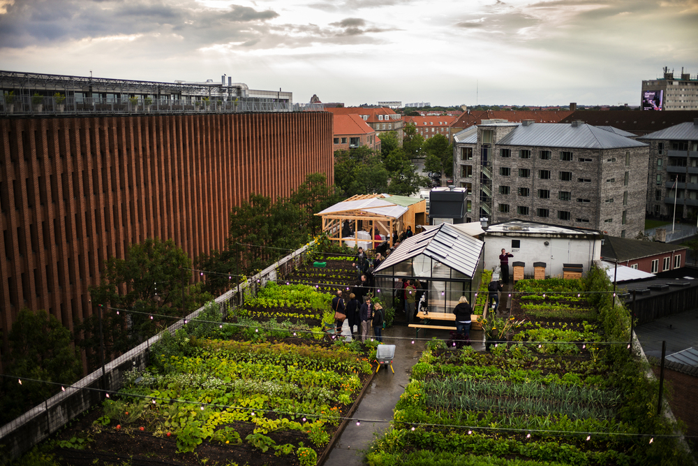 Copenhagen Cooking 2014: Farm to Table - GRO -- Photo: Rasmus Flindt Pedersen, (+45) 41604460, rasmus@flindtpedersen.com, www.flindtpedersen.com --