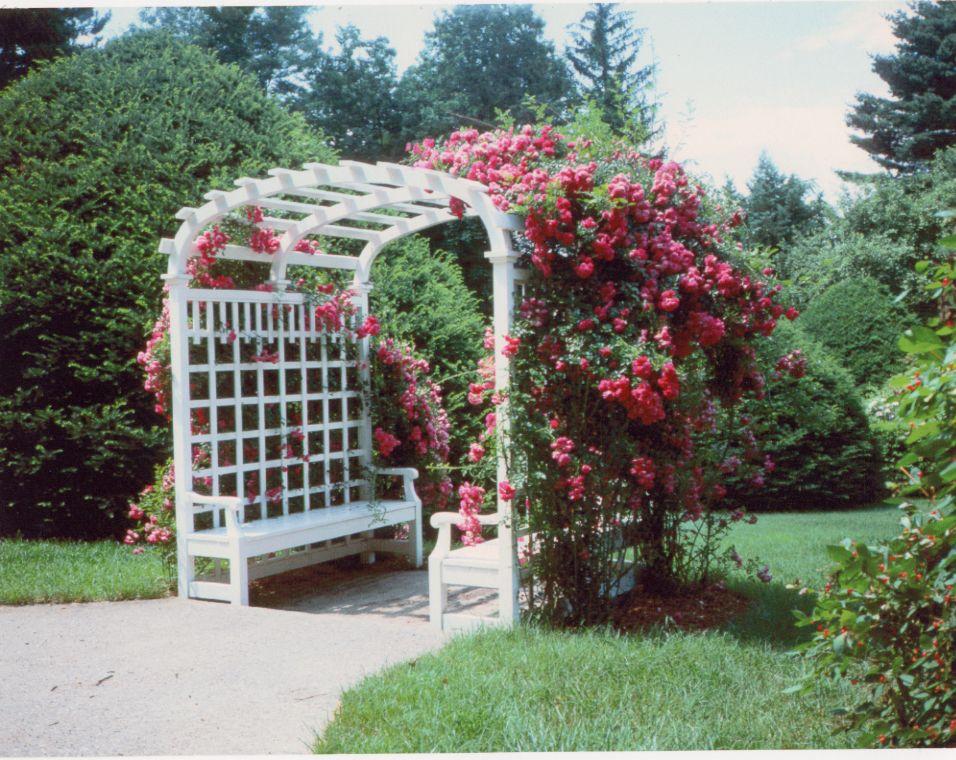 Fantastic 25 Lovely Bench Trellis Pics - Titolo.us ES03
