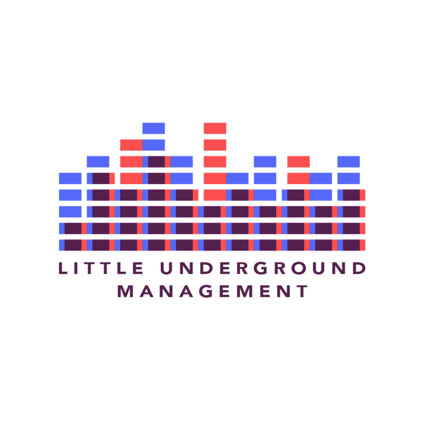Little Underground Management