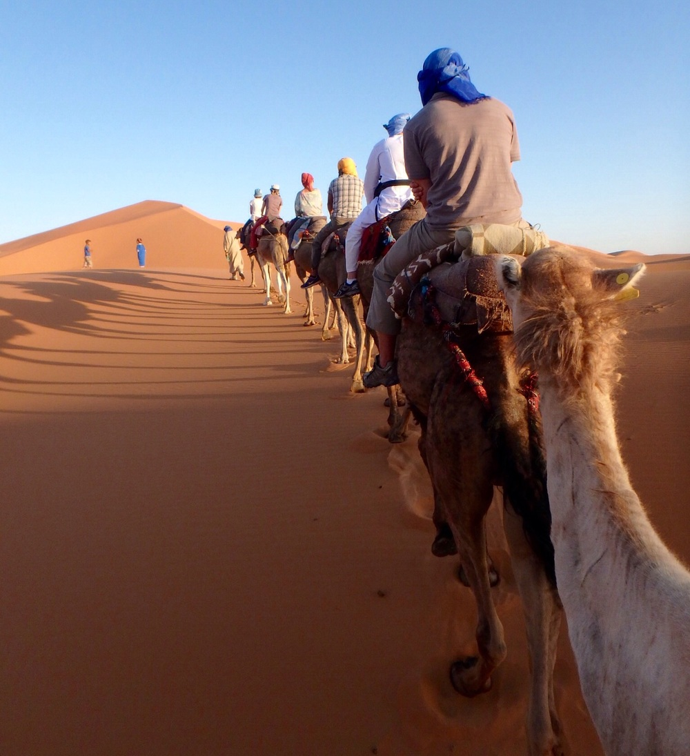 The camel caravan into the desert.